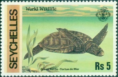 Python Turtle Graphics - Drawing with Stamps