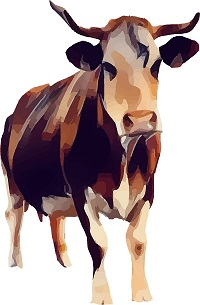 Bulls and Cows Game Programming Project for OCR GCSE Computer Science