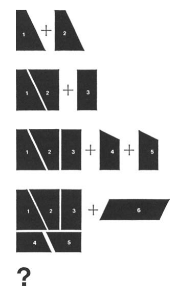Computer Science Overfitting Puzzle