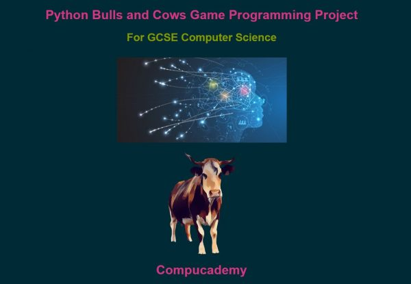 GCSE Computer Science Python Game Project